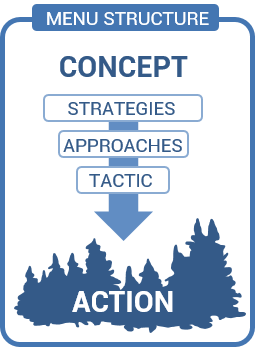 Menu of Strategies and Approaches